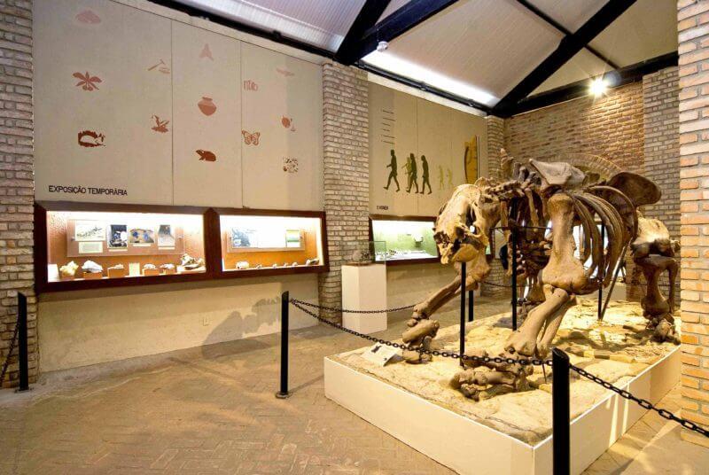 Museu de História Natural da UFMG em Belo Horizonte