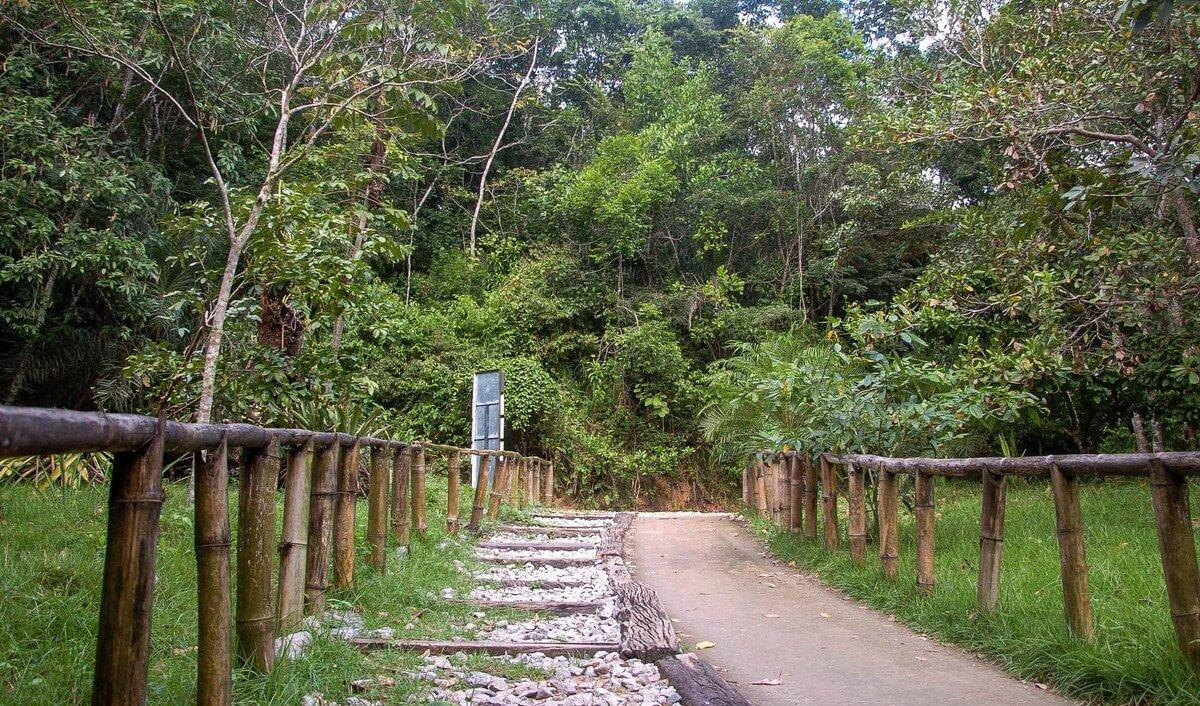 Como chegar no Parque Municipal de Maceió