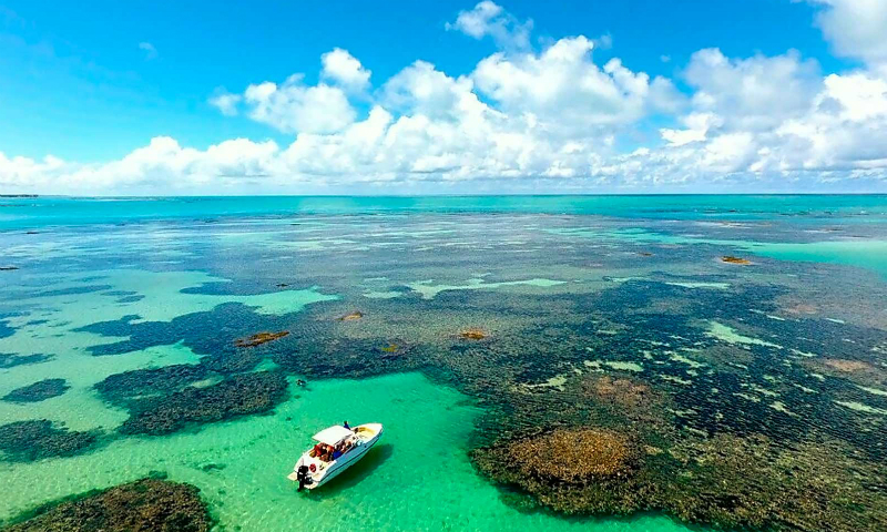 O que fazer de dia em Maceió: piscinas naturais da praia de Paripueira