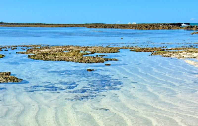Águas cristalinas das piscinas naturais de Maragogi em Maceió