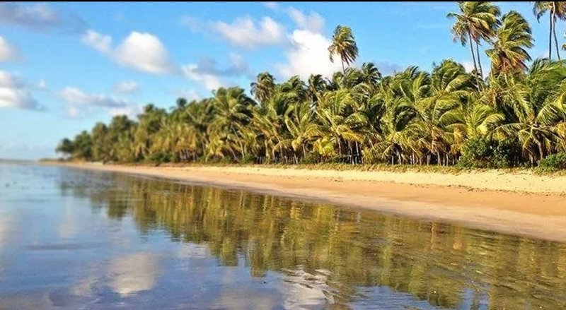 Rota Ecológica da Costa dos Corais em Maceió