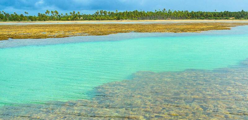 Águas cristalinas das piscinas naturais de São Miguel dos Milagres em Maceió