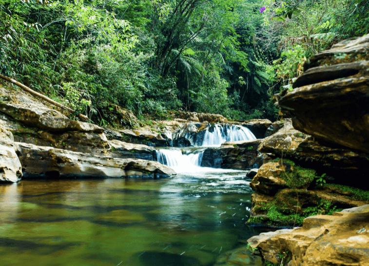 Parque Municipal das Andorinhas em Ouro Preto