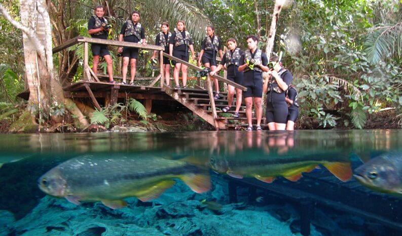 Aquário Natural em Bonito