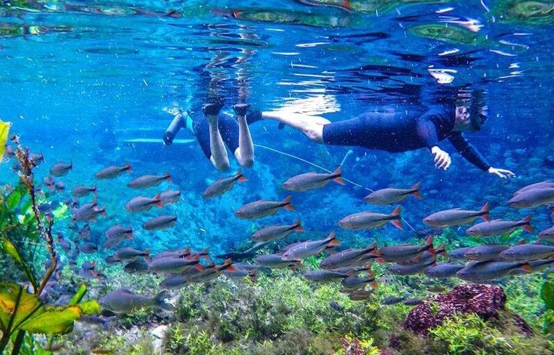 Flutuação em um roteiro de viagem em Bonito